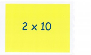 Table 10 (21)