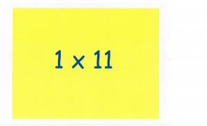 Table 11 (22)