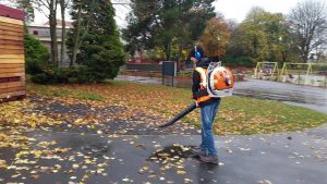 Volunteering in the park – Once a month 2