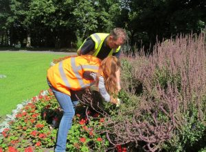 Volunteering in the park – Once a month